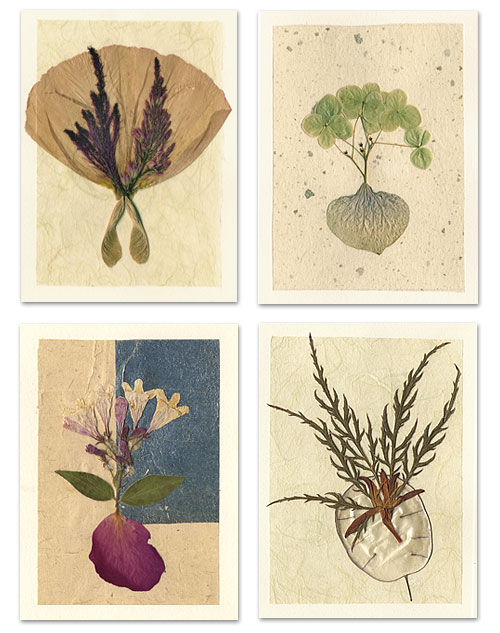 Jan Kalyani Lochner Note Cards