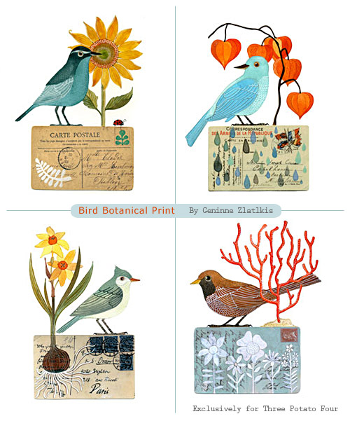 Bird Botanical Prints