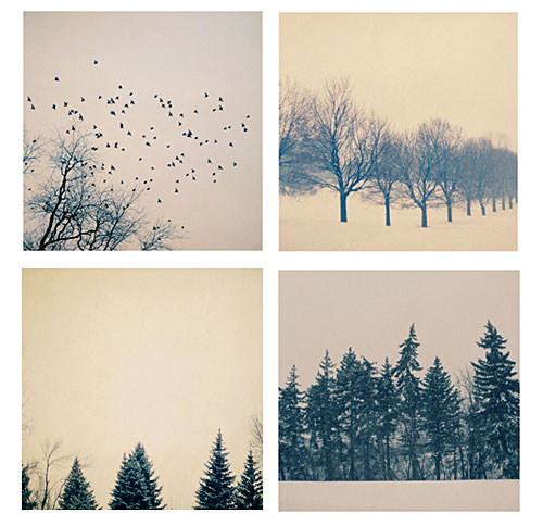 Alicia Bock - When Snow Falls